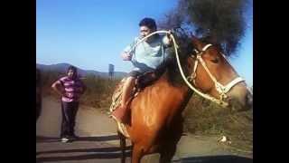 Tonto se cae del caballo