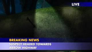 Video Clip: 'Police Pursuit'