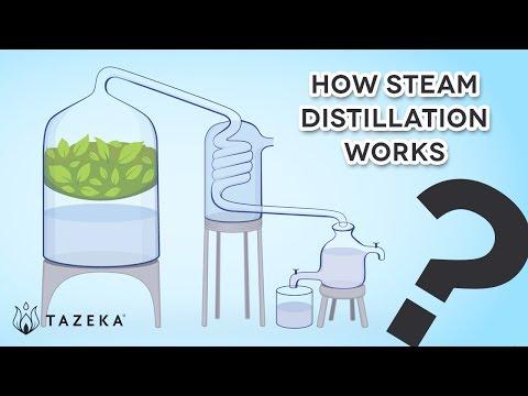 Tazeka - How Steam Distillation Works