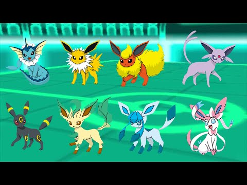 Mcflyeon Mega McBusted's Pokemon Omega Ruby Battle Spot collection #10   Match of the Eeveelutions