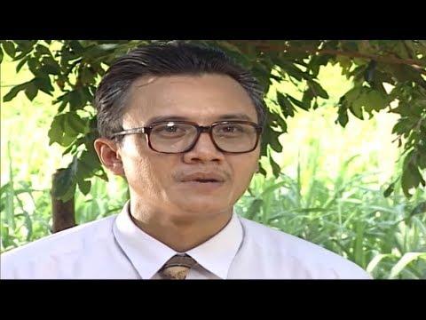 Cha Tôi và Hai Người Đàn Bà Full HD | Phim Tình Cảm Việt Nam