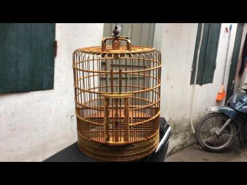 chuyên bán lồng chim Họa Mi thổ đẹp Hotline 0944114410 chimcanhdatviet.com