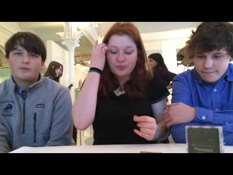 Interview With Teens Who Made Pterosaurs: How to Play
