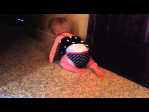 Klair crawling HD