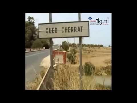 القناة الفرنسية tv5 تأكد أن مهدي بن بركة تعرض لمحاولة اغتيال بنفس الوادي الذي توفي فيه الزايدي و باها