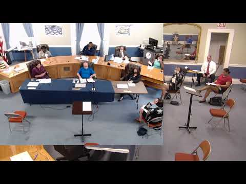 Public Safety Citizens' Review Panel  6-29-20