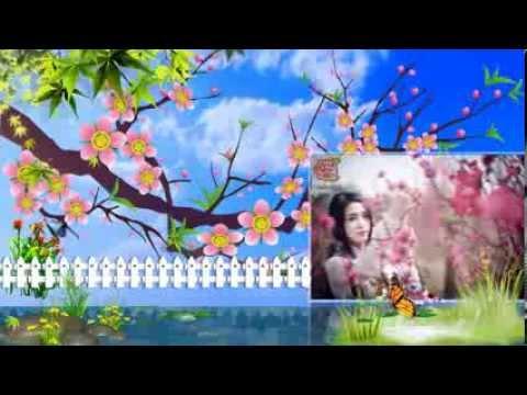 [Proshow Xuân] LK Xuân Saka Trương Tuyền