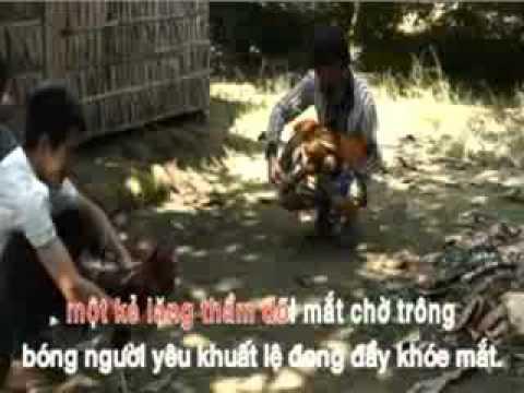Hình ảnh trong video karaoke tanco Nguoi Di Ngoai Pho -ca voi 545