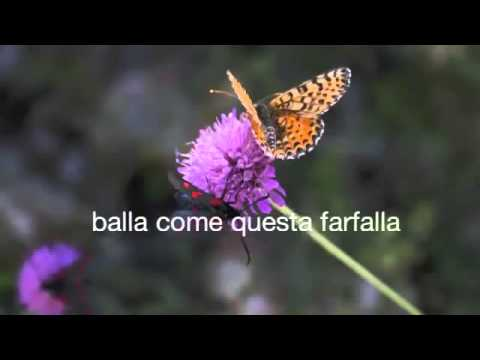 Daniele Meo - Adesso Balla (Official Song)