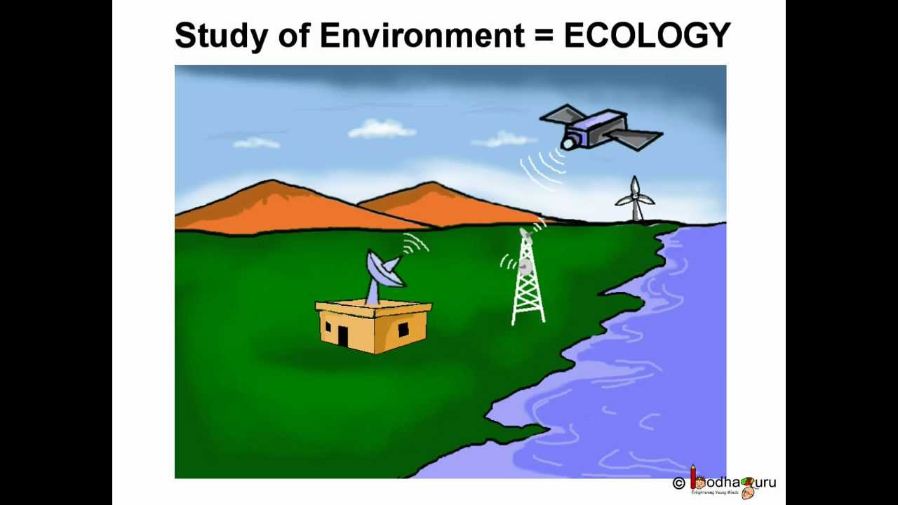 essay on science technology and environment I believe we have a moral obligation to increase the power and presence of technology in the world, but not everyone believes that — to put it mildly many believe the opposite: that we have a moral obligation to reduce the power and presence of technology.