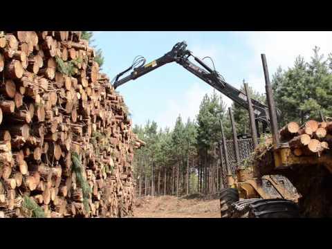 Máquinas Florestais Caterpillar