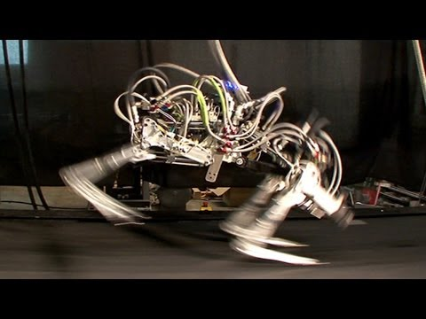 Google is Proud New Owner of World's Fastest Robot