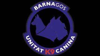 Barna gos K9 detección en vehículos