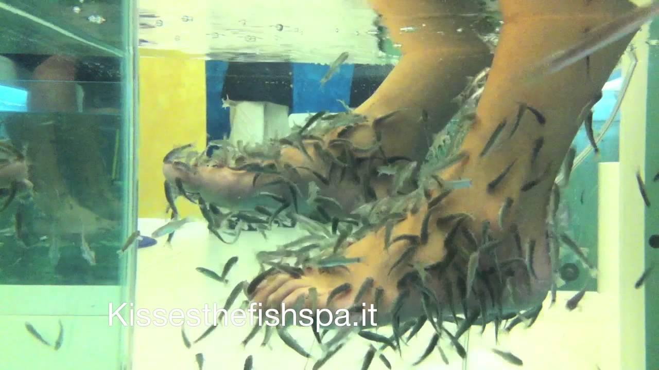 Fish pedicure fish manicure garra rufa italia youtube for Fish pedicures near me