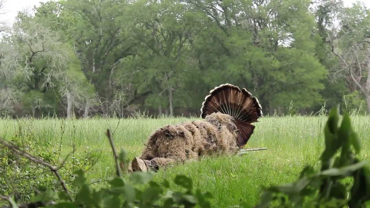 Bow Hunting Texas Hill Country