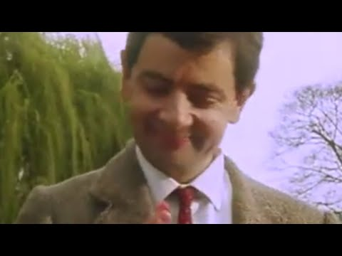 Mr Bean on a picnic image