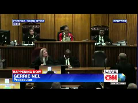 Pistorius Trial  Panel of experts scrutinize Oscar Pistorius's state of mind