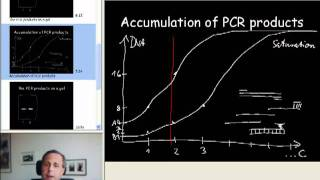 1B quantitative PCR introduction B