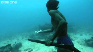 picture of Underwater Hunter Trapper