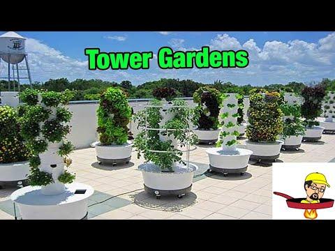 Tower Gardens - FOOD GARDENING
