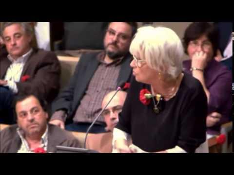 2014/04/23 - Wanda Guimarães sobre a alteração do Regulamento dos Cemitérios Municipais