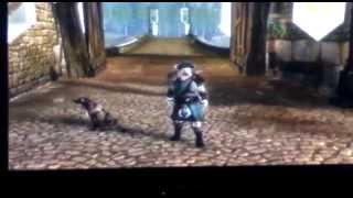 How To Play Fable 3 Two Player Offline