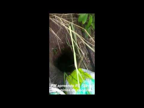 PM apreende em Marília pinos de cocaína enterrados