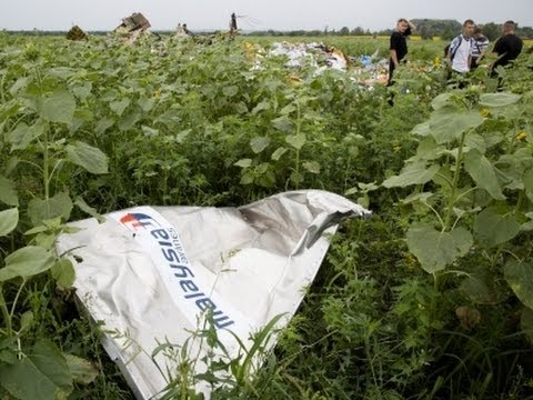 Workers Search Malaysian Plane Wreckage