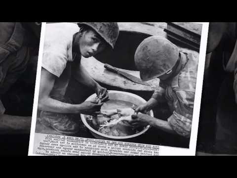 Lá thư đô thị - Chế Linh