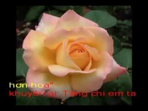 HOM NAY MONG TAM THANG BA - Pho nhac HAI ANH  Karaoke clip 1