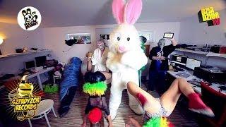 Harlem Shake :: Follow The Rabbit TV