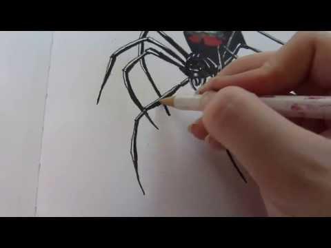 how to draw black widow easy