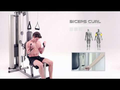 Multi Gym Advice by Gymsportz Fitness