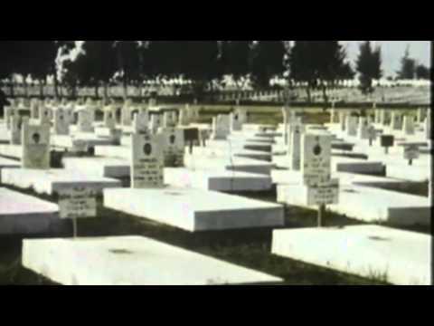 SBTN SPECIAL: Phim Tài Liệu TỘI ÁC CỘNG SẢN (P3)
