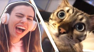 REACTING TO FELIX THE CAT OPENING OUR SURPRISE GIFTS!!! - CRAINER & THEA'S CAT!