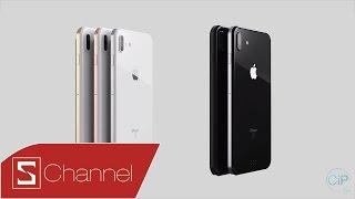 Schannel - iPhone 8, iPhone 7s và 7s Plus: Kỷ niệm 10 năm ra mắt, Apple sẽ mang đến bất ngờ gì?