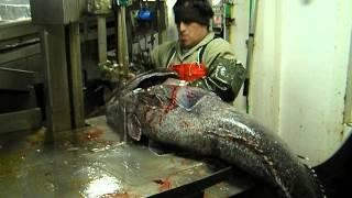 Espectacular corte de pescado