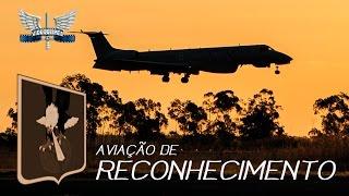 Veja no vídeo uma homenagem ao Dia da Aviação de  Reconhecimento da Força Aérea Brasileira (FAB), comemorado no dia 24 de Junho.