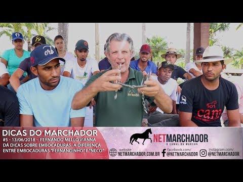 #5 DICAS DO MARCHADOR - FERNANDO MELLO VIANNA - A DIFERENÇA ENTRE AS EMBOCADURAS