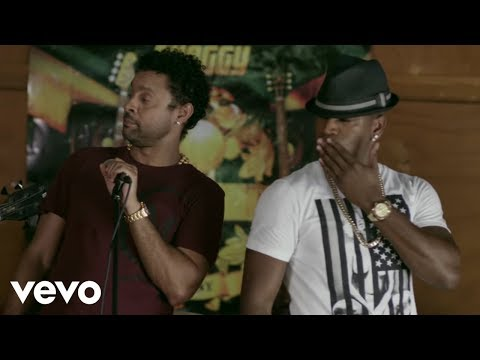 Shaggy-You Girl ft. Ne-Yo