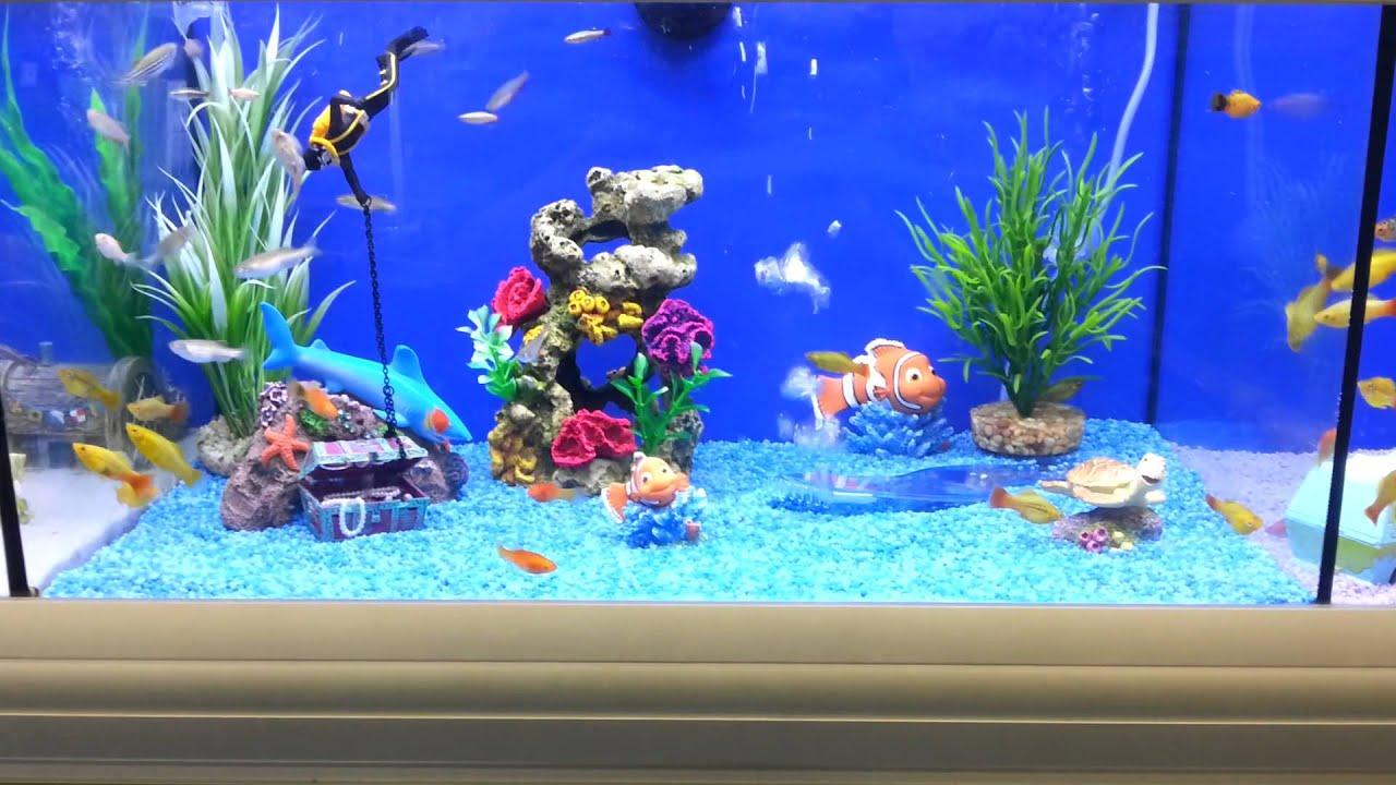 Brilliant Fish Tank For Kids - YouTube