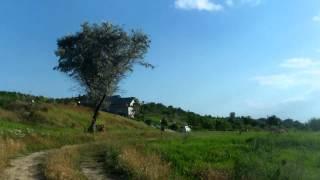 Cimitirul militar de la Stoianovca/Țiganca e pustiu