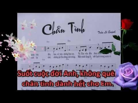 Chân Tình - Karaoke (Chỉ nhạc & lời, không ca sĩ)