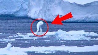 Những Thứ Kỳ Lạ Được Tìm Thấy Ở Nam Cực – Phần 2