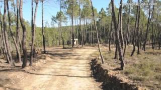 PR8 PNV – Caminho do Xisto de Figueira (Proença-a-Nova)