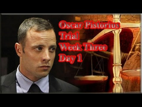 Oscar Pistorius Trial: Monday 17 March 2014, Session 1