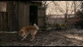 Hachiko: A Dog´s Story  Based On A True Story