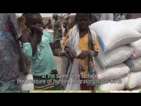 Bio-rights in Mali's Inner Niger Delta - Part 1