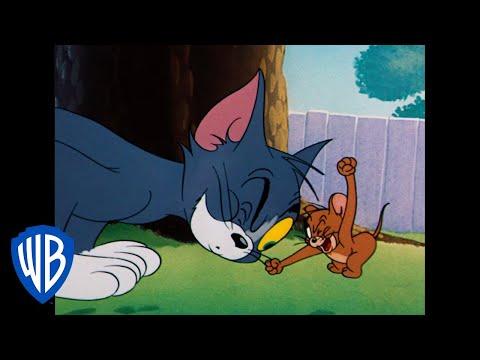 Tom a Jerry - Rivalita storočia