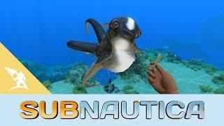 Subnautica - Cuddlefish Frissítés